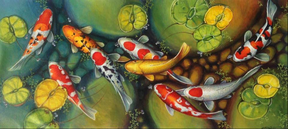 koi fish acrylic painting for sale